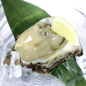 新潟県産天然岩牡蠣(生食用)15個入り(約2.3kg)
