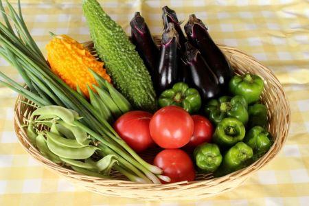 [B20] メルヘンおやべの季節野菜セット 2回定期便