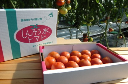 [A59] フルーツトマト(深層水トマト)1.5kg