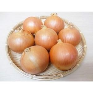 ≪2021年10月上旬より発送≫北海道長沼町産玉ねぎL大サイズ10kg【1229123】