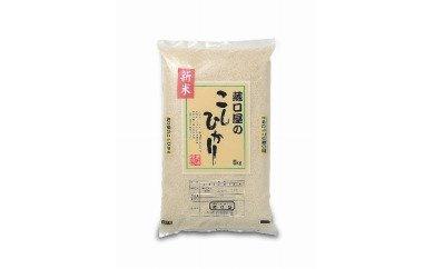こしひかり5kg(玄米)