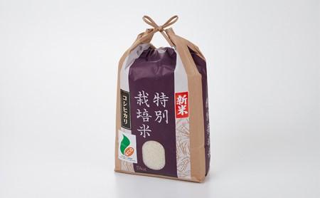 [№5784-0001]「新米」加賀百万石特別栽培米コシヒカリ白米5kg