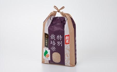 [№5784-0002]「新米」加賀百万石特別栽培米コシヒカリ玄米5kg
