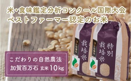 加賀百万石特別栽培米コシヒカリ玄米10kg
