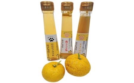[№5784-0145]里山からの贈り物 国造ゆず果汁・果実酢・シロップ詰合せ