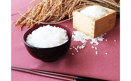 [№5784-0193]【特別栽培米】豊かなお米・コシヒカリ・5キロ精白米