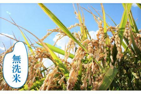 【無洗米12ヶ月定期便】特別栽培「きなうす米」ゆめぴりか5kg×12回 03_P011