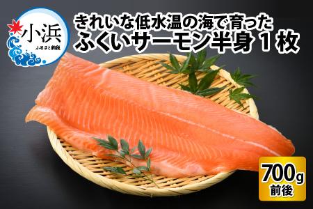国産 サーモン 700g ふくいサーモン [A-001001]