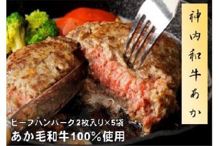 10 神内和牛あか 100%ビーフハンバーグ 10枚入り