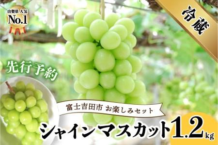 【お楽しみセット】 山梨県産 シャインマスカット2房 (1.0kg以上)