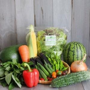 まつの幸せ野菜BOX~プレミアム富士山玉手箱~(S)