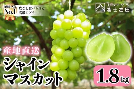 【産地直送】山梨県産シャインマスカット2~4房(約1.8kg)