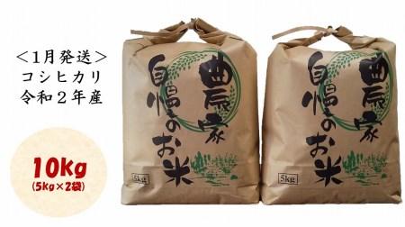 【1月発送】コシヒカリ10kg(5kg×2袋)<都留市産>令和2年産