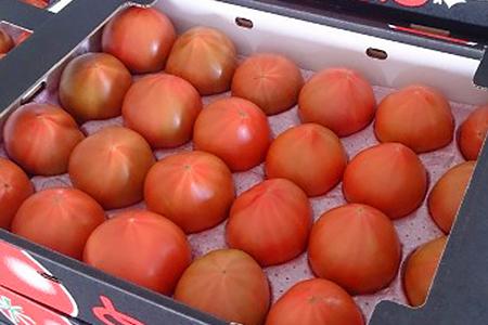 102 清野ファーム高糖度トマト(大玉) 20玉~24玉