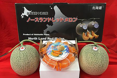 A06 赤肉メロン(1.3kg×2玉)・ひとくちメロンゼリー(20個入)