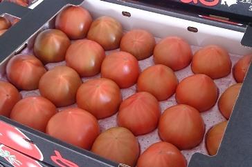 1201 清野ファーム高糖度トマト ※7月~8月にお届け