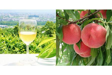 1-3-10 ストレート果汁100%ジュース「南アルプスの桃」2本セット