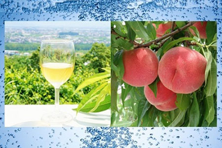 1-3-13 ストレート果汁100%(スパークリング)ジュース「南アルプスの桃」2本セット