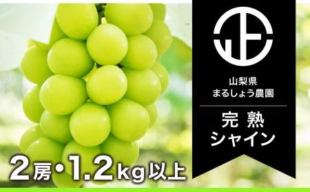 B0-017 【完熟】 シャインマスカット 2房 1.4㎏以上