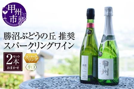 B2-604.スパークリングワイン辛口2本セット