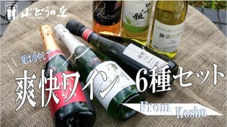 E-603.爽快ワイン6種セット