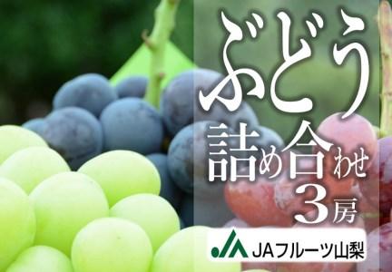 B2-103.JAフルーツ山梨ぶどう詰め合わせ3房