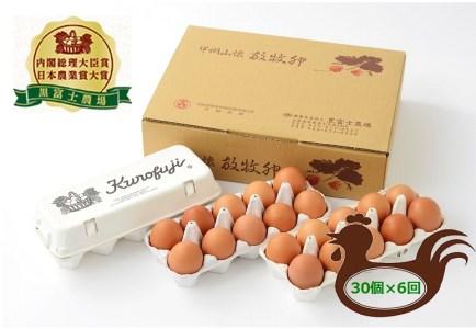 F-501.甲州放牧卵の定期便 30個×6回