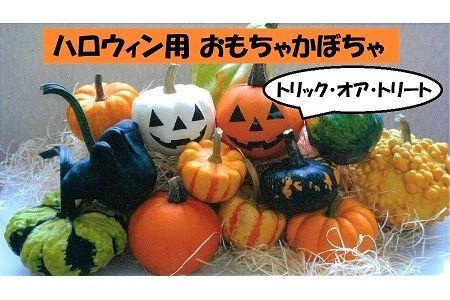 ハロウィン用おもちゃかぼちゃ【E-05】