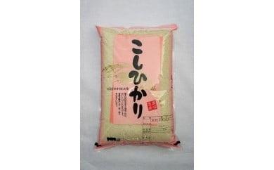 024-001「関口さんちのお米」コシヒカリ20kg