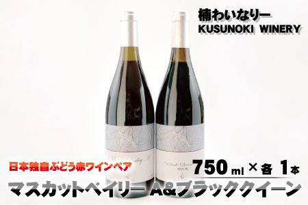 日本独自ぶどう赤ワインペア -マスカットベイリーA&ブラッククイーン 750ml×各1本-《楠わいなりー》