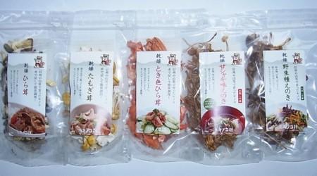 [№5657-3100]健康乾燥キノコセット(彩り)