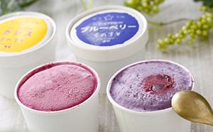 [№5657-2074]信州須坂産ブルーベリー・カシスアイスクリームセット