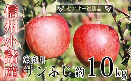 信州小諸産 ご家庭用 サンふじりんご 約10kg 長野 林檎 リンゴ 訳あり 自家用