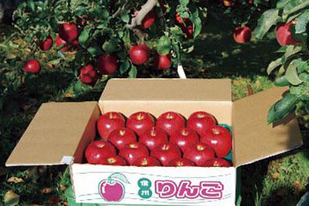 【AB-18】みはらしファームのフルーツ リンゴ