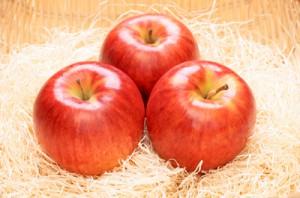 【AB-29】信州のサンつがる5キロ 旬のりんご(リンゴ・林檎)を早く食べたい方はこちら!!