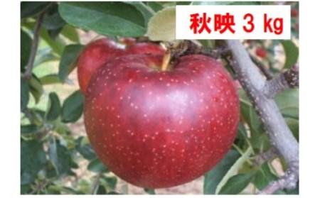 I-07 秋映(あきばえ) 3kg