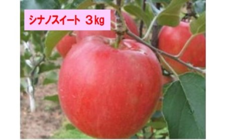 J-07 シナノスイート 3kg