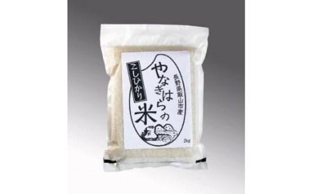 1−19 【令和元年産 新米予約】 「やなぎはらの米 こしひかり」4㎏(真空包装)
