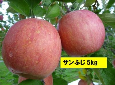 K-1.3 サンふじ 約5kg (2021年産 予約)