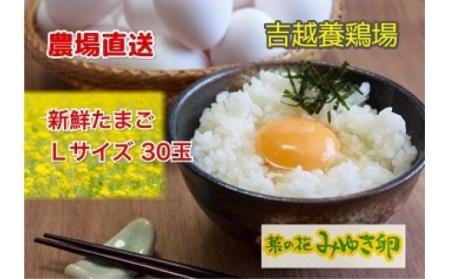 I-06 農場直送「菜の花みゆき卵」L玉30個入
