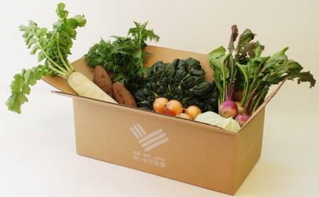 ゆいさん家の野菜セット
