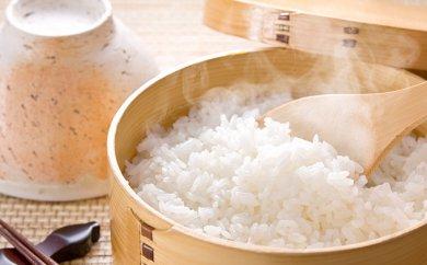 清流米 たきたて 5kg