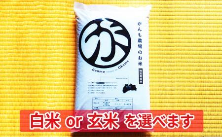 [№5865-7004]0219がんも農場の新米 まずは味見で5kg 玄米