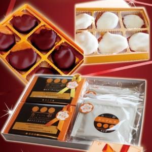 杏チョコ2種&あんず紅茶セット
