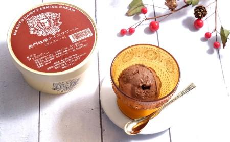 長門牧場アイスクリーム 480mlチョコレート2個セット