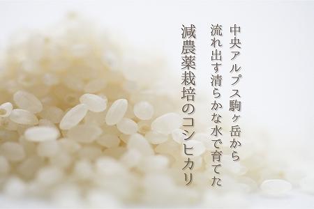 減農薬栽培コシヒカリ30kg