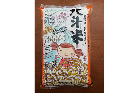 【2624-0039】【令和元年産】北斗米ななつぼし 10kg(5kg×2袋)