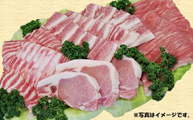29-D01 南信州くりん豚 半頭食べ尽くしセット