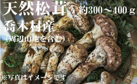 3-F01 松茸