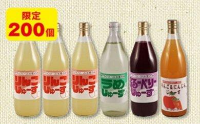 28-A16 富田農産加工組合 手づくりふる里の味 果汁ジュース詰め合わせ